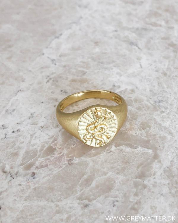 Golden Signet Snake Ring